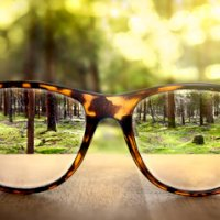 Foto de Veo veo y percibo.. Visuopercepción.